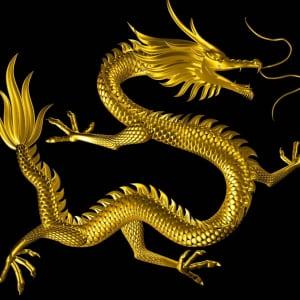 Live Dragon Tiger Casino 背后的技术