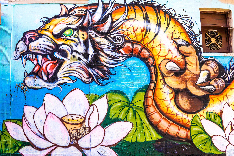 Live Dragon Tiger (Pragmatic Play) 游戏评论